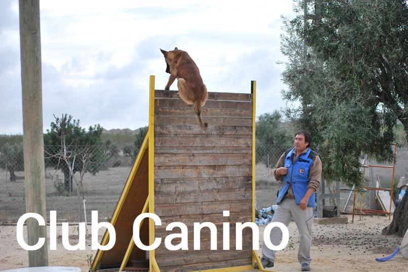 SeguraCan Club Canino